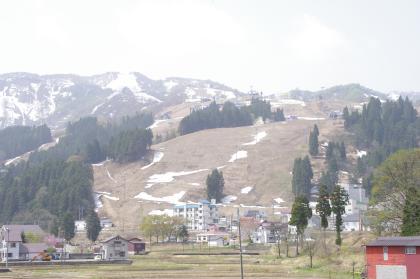 IMGP4352.jpg