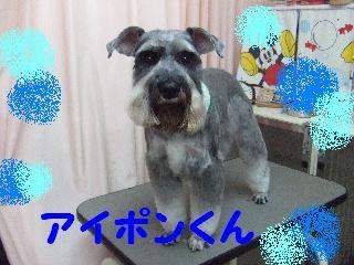 2008_0201ふみえ0127