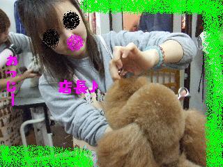 2008_0204ふみえ0010