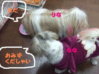 2008_0204ふみえ0031