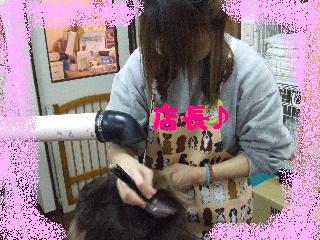 2008_01220018.jpg
