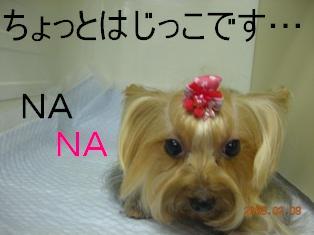 DSCN0648.jpg