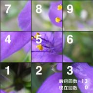 Shot_1.jpg