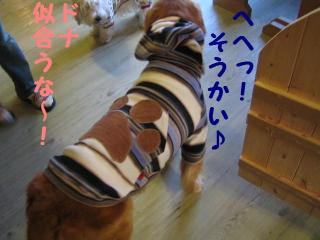 IMG_3717_20071212214635.jpg