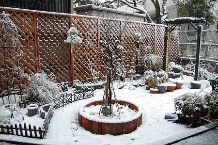2008雪1