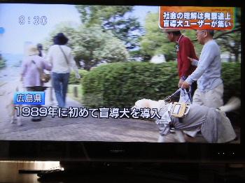2011_0607_084550.jpg