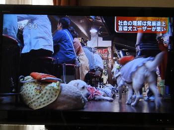 2011_0607_084741.jpg