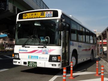 DSCN0627.png