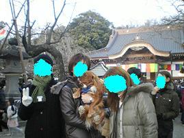 ブログ深大寺