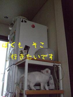 2007_07140012w.jpg