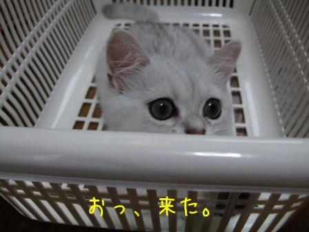 2007_07300011w.jpg