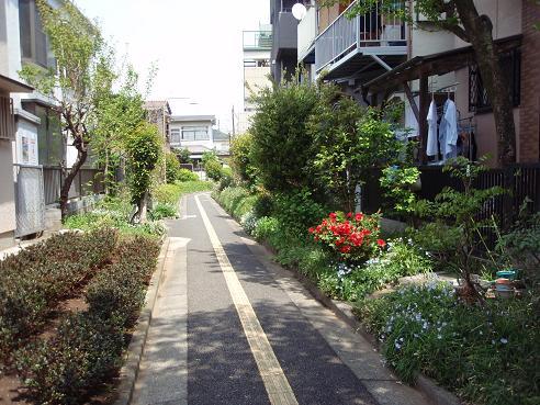 北沢川緑道1
