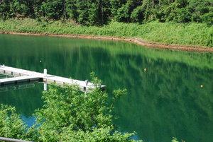 湖面に映る深緑34
