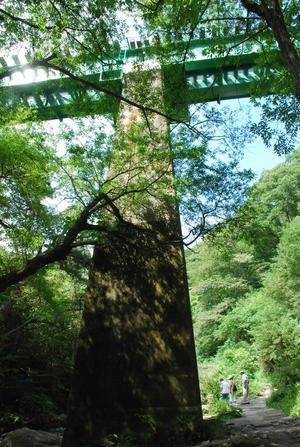 小海線の鉄橋の下・吐竜の滝へ26