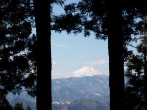 120219景信山-高尾山 (3)50