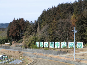 chabatake_kikaku901.jpg