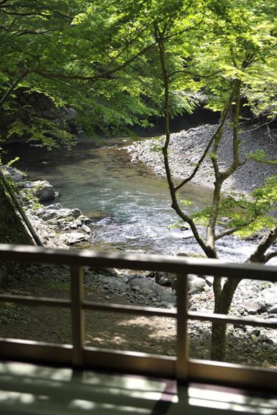 takaomomiji002.jpg