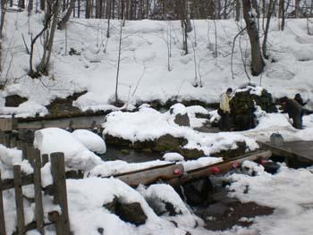 水汲み場も雪に埋もれてます
