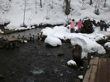 池の方に観光客が・・・