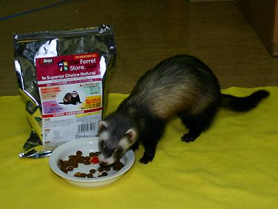 『食べてみなきゃ、味はわかんないわよ!』