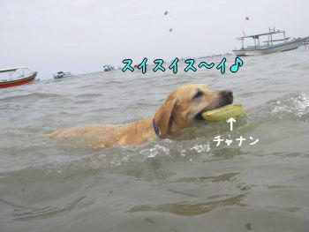 20080101-2.jpg