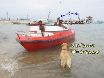 20080101-4.jpg