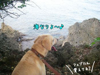 20080113-8.jpg