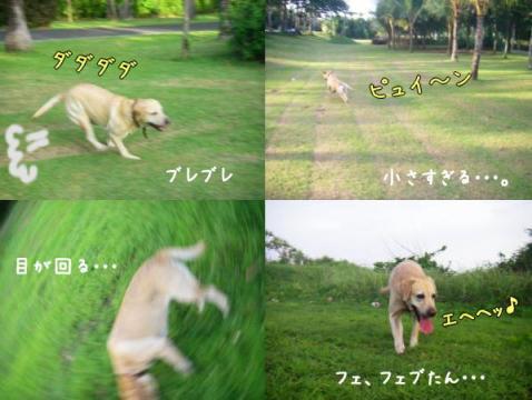 20080113_4.jpg