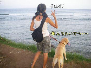 20080113_9.jpg
