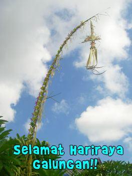 20080122-4.jpg