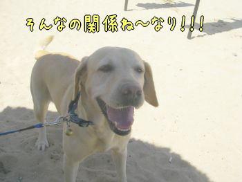 20080124_3.jpg