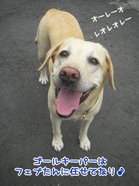 20080217-1.jpg