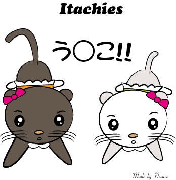 Itaches-2.jpg