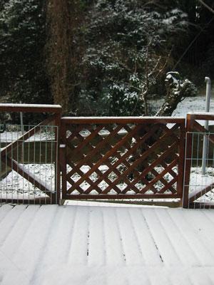 2008-1-17.jpg