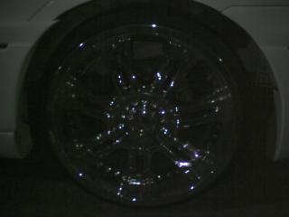 ST310081.jpg