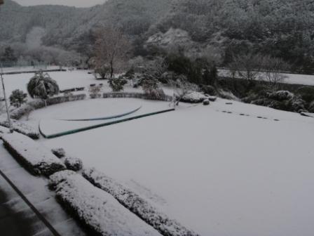 12.25雪5