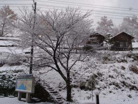 12.25雪3