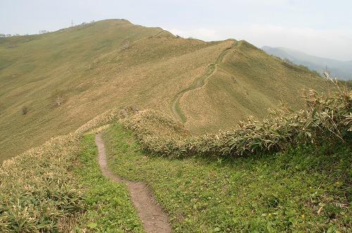 紋別岳稜線110601