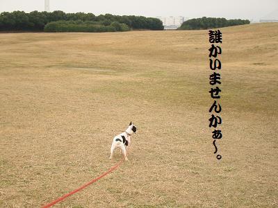 IMG_1040海ふれ