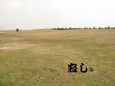 IMG_1042海ふれ