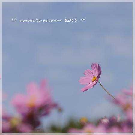 _MG_9299.jpg