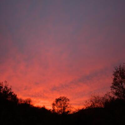 空も紅葉色