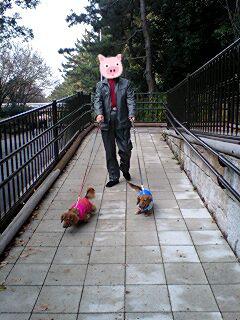 00ryokuchipark.jpg