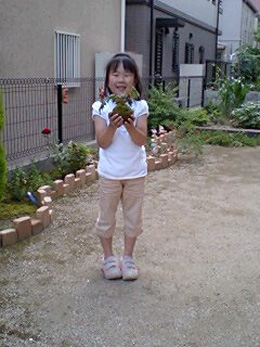 mikuchan.jpg