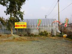 広川くだもの村2