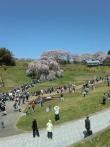 fukushima07mini.jpg
