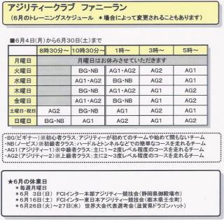 6月のトレーニングスケジュール