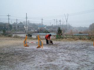 また雪が降り始めました。