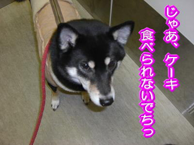 200129-2.jpg