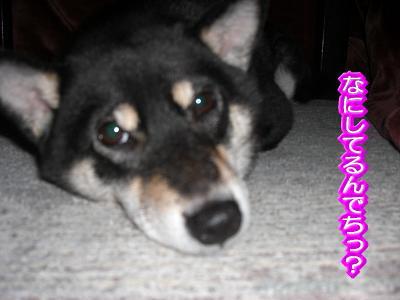 200206-5.jpg